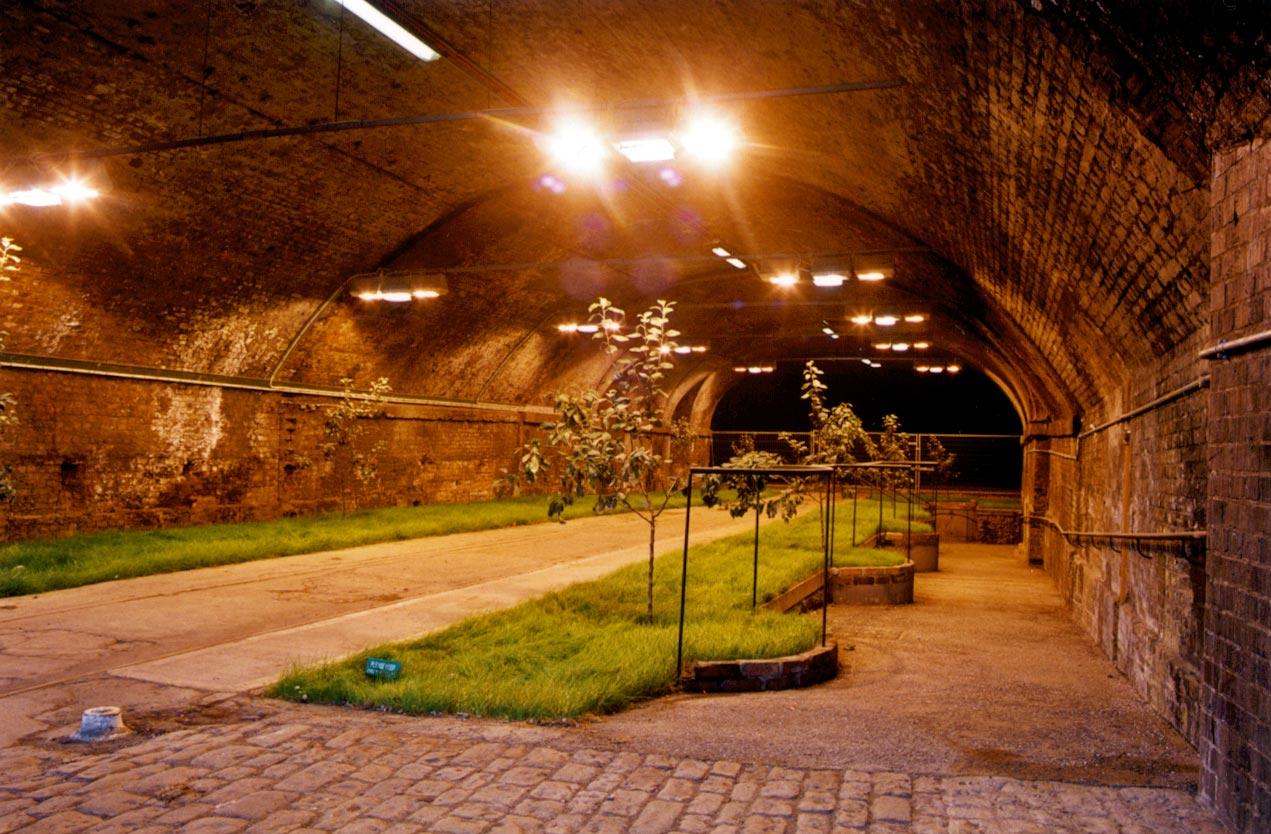 railway arches garden